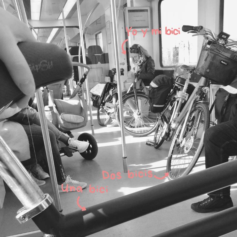 Bici en tren a ver tulipanes